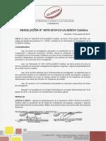RESOLUCION LINEAS 2019.pdf