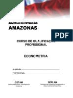 Apostila_Econometria