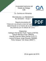 2 PRACTICA BIOMOLECULAS  FINAL.docx
