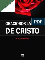 livro-ebook-graciosos-labios-de-cristo.pdf