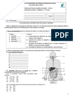 Teste Sistema Digestivo