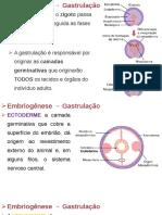 3 Histologia Tecido Epitelial