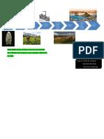 Cultura Ambiental (1) Linea de Tiempo -YLMA -JUAREZ-QUINTANA IRIGOIN