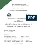 Effets Du Brouillard Et de l'Injection de La Vapeur