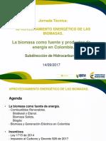 2. Biomasa Fuente de Energía UPME
