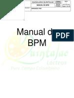 Manual-de-BPM (1 (1)