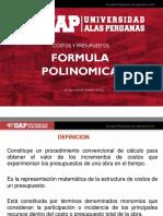 forma polinomica