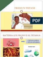 CLOSTRIDIUN TETANI