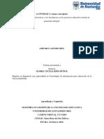 Amparo Caicedo Rey Mapa Actividad 1.1.Docx