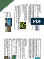 Cap 6.1.2      Fichas Ecorregiones.pdf