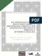 E-book Há Indigenas Em Sp