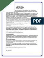 PRACTICA Nº 1 NINA.docx