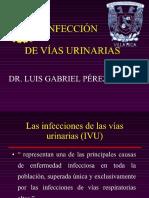 2--infeccion-urinaria-luis-gabriel-perez-santos-.pdf