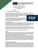 Informe Gestion Santiago IITrimestre