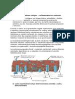 Modulo 2.docx