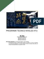 Manual Detallado Nivel Kyu