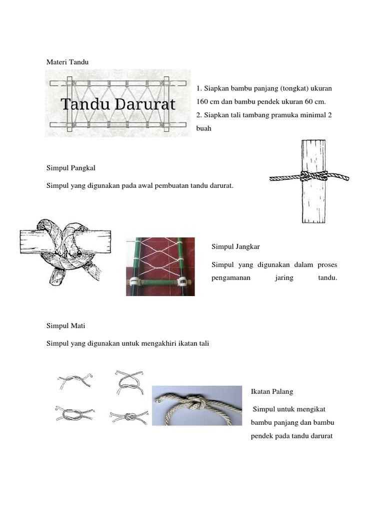 Materi Tandu