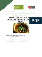CONCYTEC (Autoguardado).docx