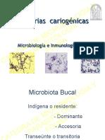 Bacterias Cariogenicas