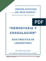 Texto Practica Hemostasia y Coagulación Fds (2)