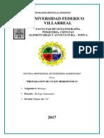 379396993 Informe Lechuga Hidroponica