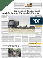 Nadie frena la depredación de algas en el sur de la Reserva Nacional de Paracas