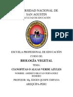 Cianofitas- Americo Fernandez Romero