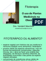 FITO Vanderli.pdf