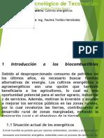 cultivos energeticos.pptx