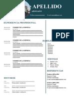 97-curriculum-abogado-97-2003.doc