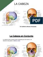 (9) La Cabeza en Conjunto_20190414233832-Convertido