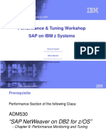 SAP for System z Performance and Tuning Workshop-Abbreviated