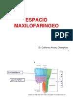 (12) Espacio Máxilo faringeo_20190414234235.pptx