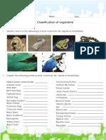 Mammals Bird Fish Reptile Amphibian