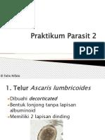 37164_Praktikum Parasit 2 2