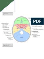 KR 03 - Foramina of Skull (Internal Aspect)