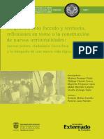 despplazamiento forzado y territorio, reflexiones en torno a la construcción de nuevas territorialidades