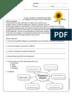 Comprensión Lectora Primaria y Primer Grado Parte3