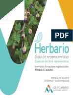 Herbario Guia Reconocmiento