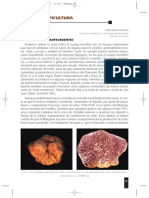 13 Trufa y truficultura.pdf