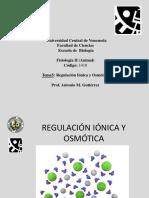 Regulacion Ionica y Osmotica