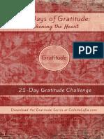 Gratittude Exercise 28 days.pdf