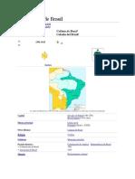 Colonización de Brasil.docx