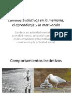 Evolución de la actividad psicológica en los primates.pptx