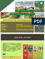 Buenasprcticasagrcolasesprrago 131113150708 Phpapp01 (1)