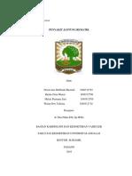 CSS PJR.pdf