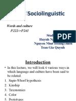 Sociolinuistics