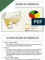 64620362-CLASIFICACION-DE-DIMEGLIO.pptx
