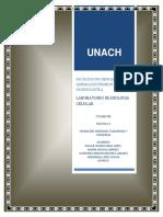 UN_AC_FACULTAD_DE_CIENCIAS_QUIMICAS_EXTE.docx