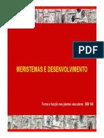 meristemas_parte1.pdf